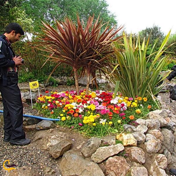 تصویری از باغ صخره ای اصفهان