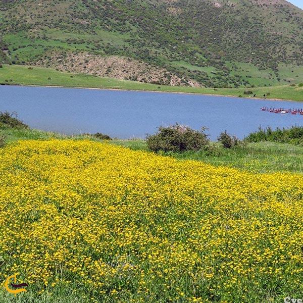 تصویری از دریاچه خلشکوه