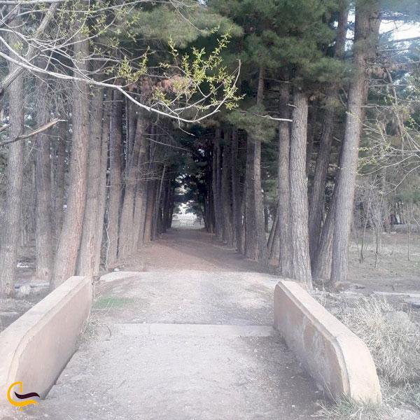 تصویری از باغ ملی فریمان