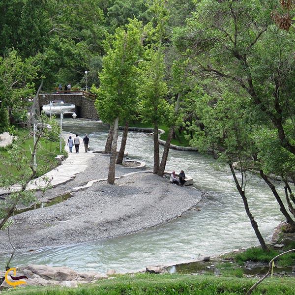 تصویری از پارک جنگلی وکیل آباد