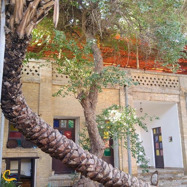 تصویری از نخل عمارت ماپار