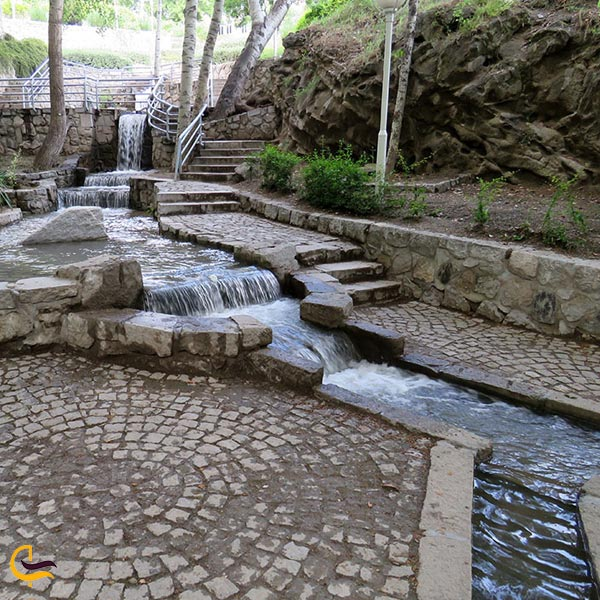 نمایی از پارک جنگلی وکیل آباد