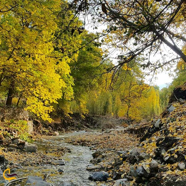 تصویری از روستای کردان