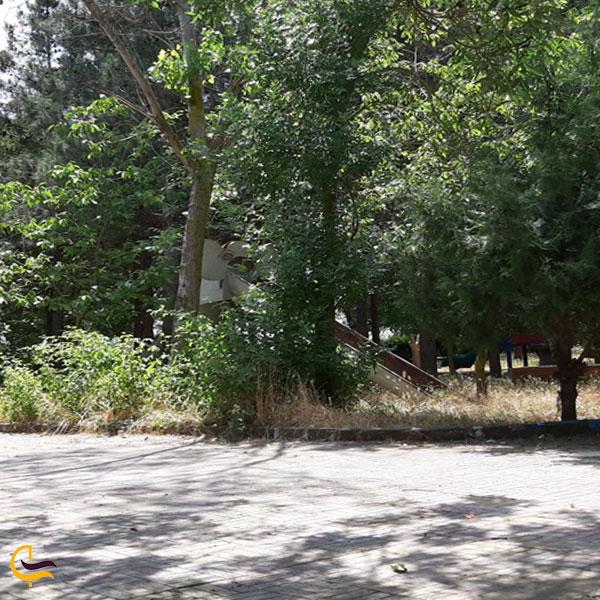 عکس از پارک جنگلی تپه نرگس