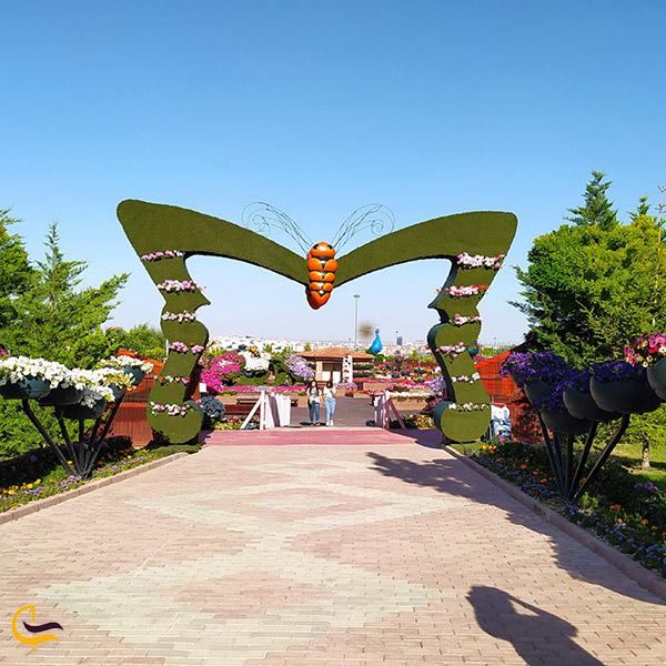 عکس عکس اشنایی باغ گرمسیری پروانه