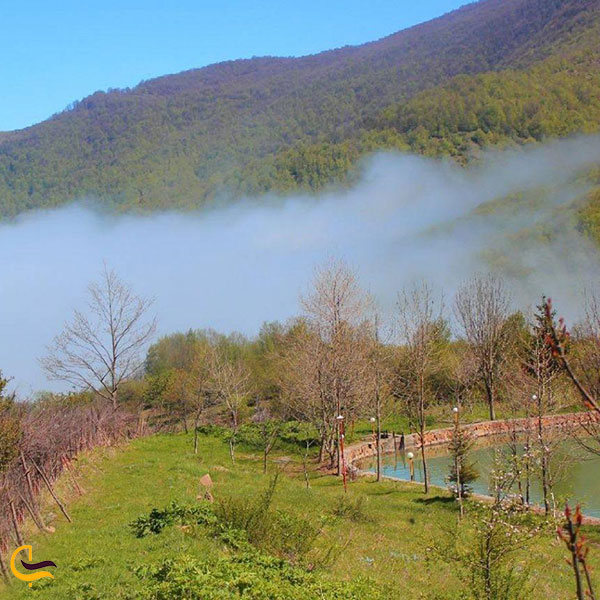 عکس طبیعت اطراف دریاچه قو