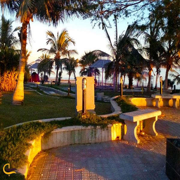 تصویری از پارک ساحلی زیتون قشم