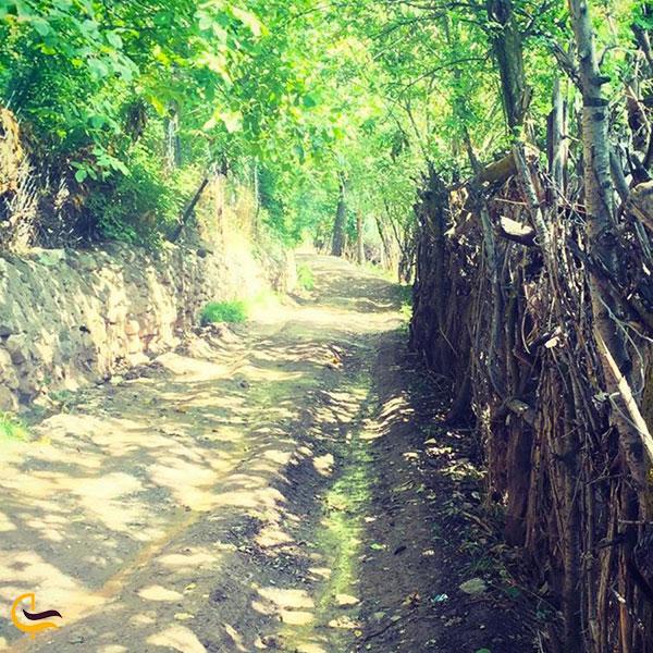 عکس فصل تابستان و بهاردر روستای امامه