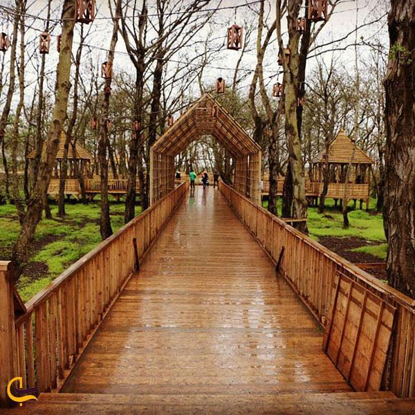 عکس پارک جنگلی توسکا