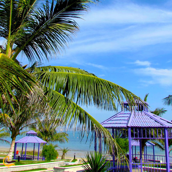 نمایی از پارک ساحلی زیتون قشم