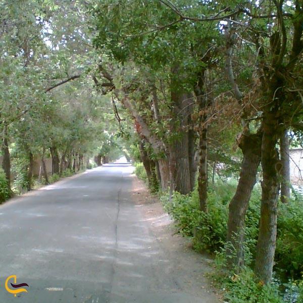 تصویری از روستای یبارک