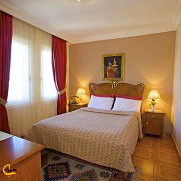 تصویری از هتل الزر