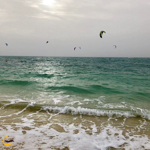 تصویری از ساحل جمیرا دبی