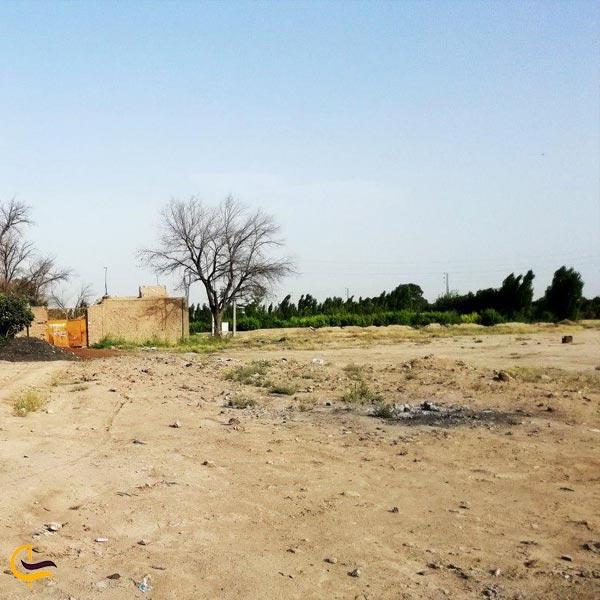 تصویری از کوچه باغ های روستای رضی آباد