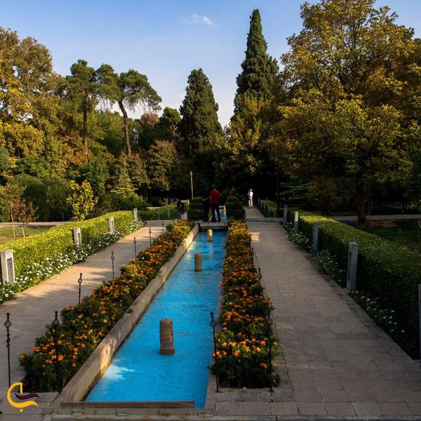 عکس از باغ گیاه شناسی شیراز