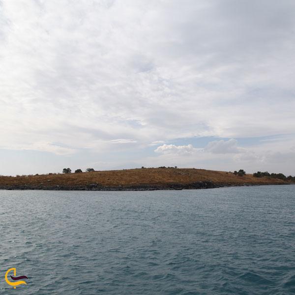 تصویری از جزیره آدیر