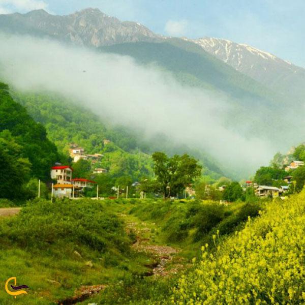 عکس علی آباد کتول در بهار