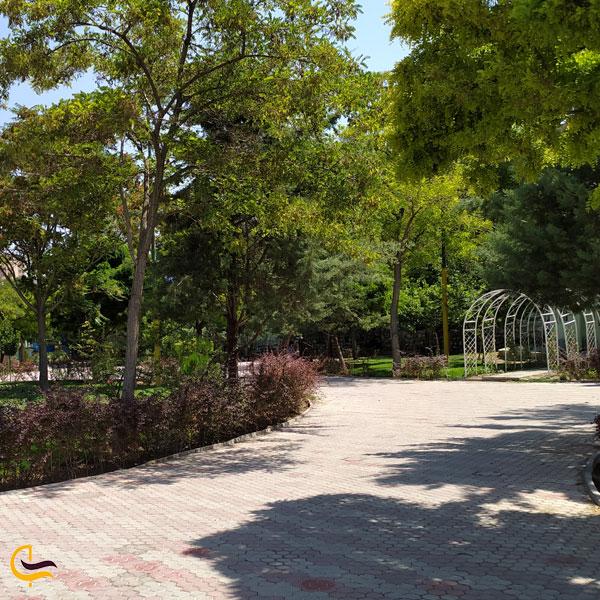 عکس از پارک سرسبز آنالار و آتالار