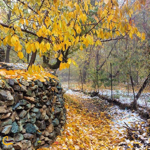 عکس فصل پاییز روستای سنگان