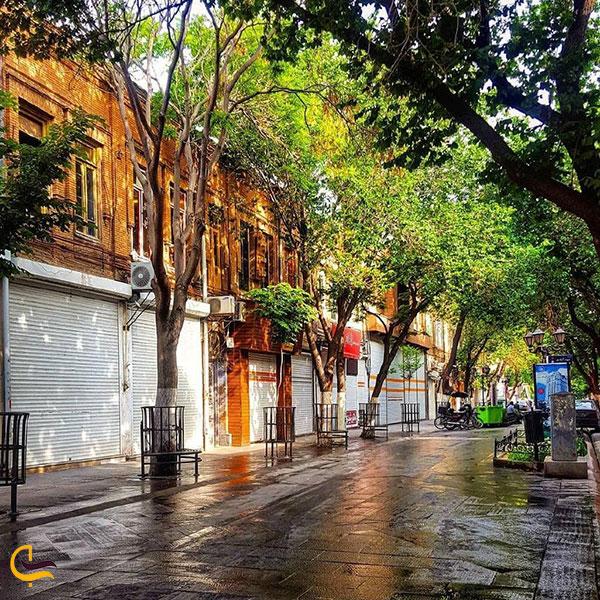 عکس سرسبزی خیابان تربیت تبریز