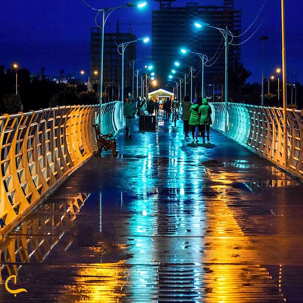 عکس گشت و گذار شبانه در پل طبیعت کیانپارس اهواز