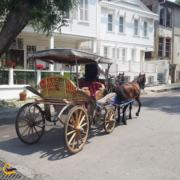 تصویری ازدرشکه سواری در خیابان های جزیره بیوک آدا