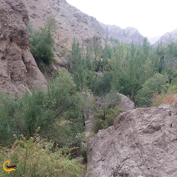 عکس پوشش گیاهی ابشار رود معجن
