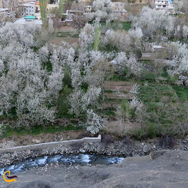 عکس فصل بهار روستای سنگان