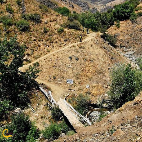 عکس فصل تابستان روستای سنگان