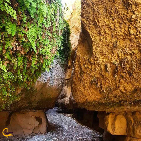 عکس طبیعت غار زینه گان