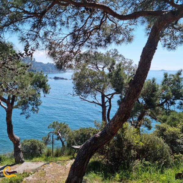 عکس از جزیره بیوک آدا