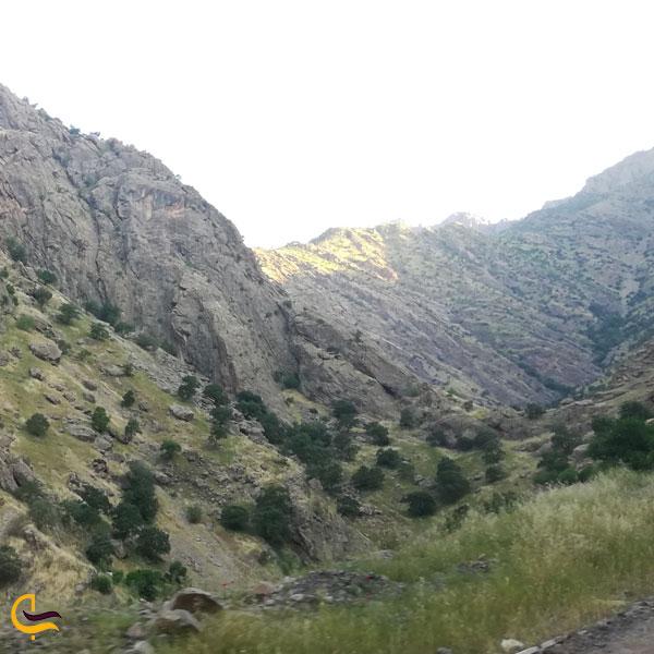 تصویری از طبیعت روستای هجیج