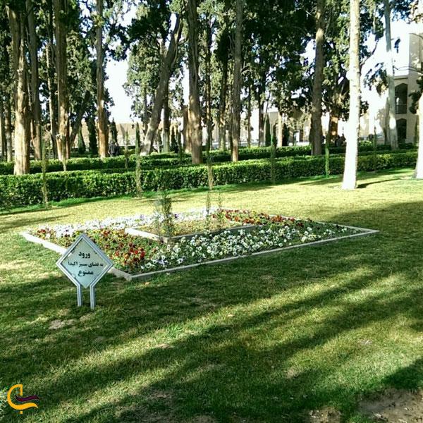 تصویری از باغ فین کاشان