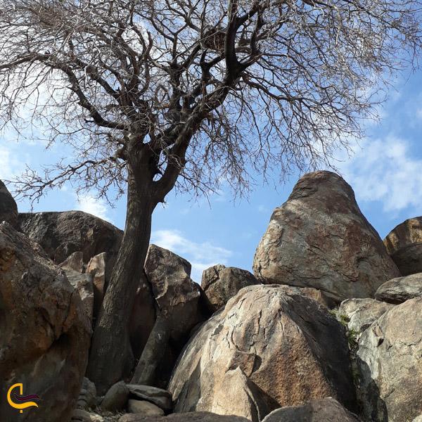 تصویری از بوستان سنگی کمر مقبولا