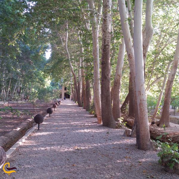 تصویری از باغ پهلوان پور مهریز یزد