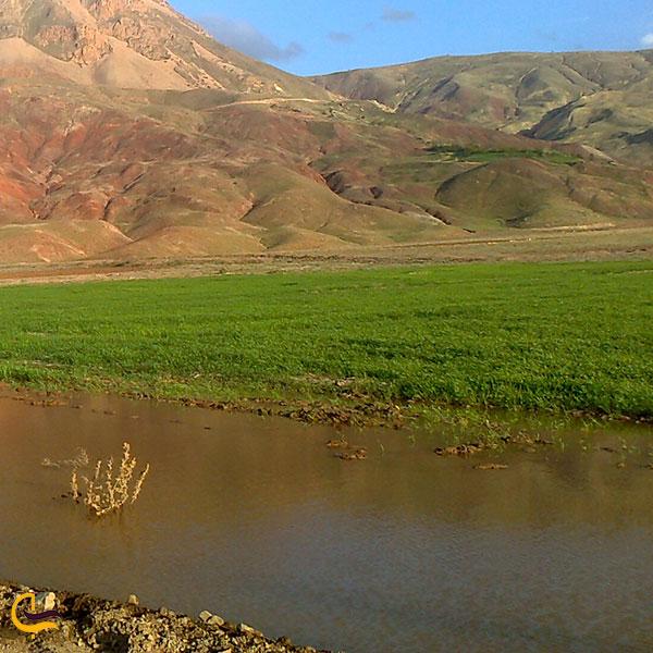 عکس پوشش گیاهی منطقه حفاظت شده میشو داغ